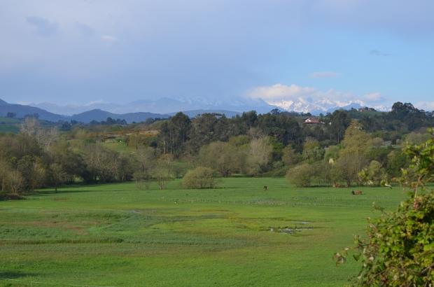 2 Distant mountains