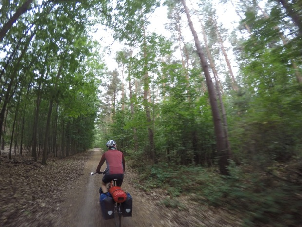 Nice ride in the woods