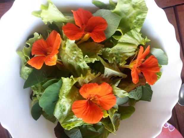 07_salad