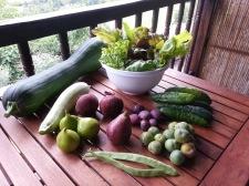 04_produce
