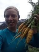 09-carrots