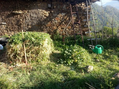 Freshly made compost heap