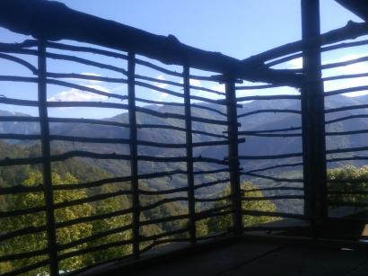 Hazel railing