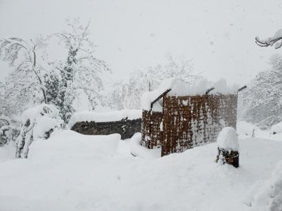 A bit snowy