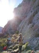 Vidi climbing