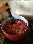 Making plum juice