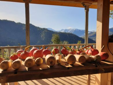 Pumpkins drying on the balcony