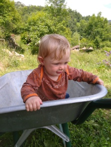 Wheelbarrow rides are a hit